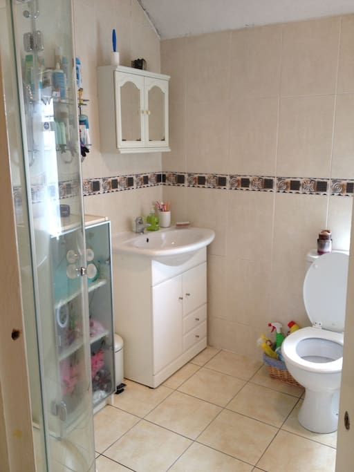 Shared bathroom with electric shower, sink, toilet.
