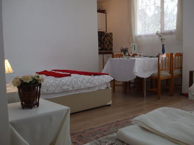 Stüdio Apr.2  with garden + kitchen - İstanbul/maltepe/bağlarbaşı - House
