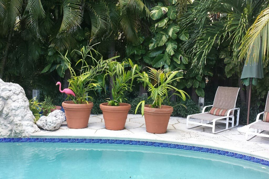 Private room with private bath houses for rent in key for Bath house key west