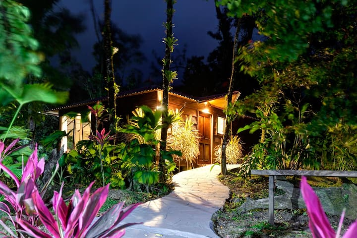 Tropical suite 2 - La Fortuna - Bed & Breakfast