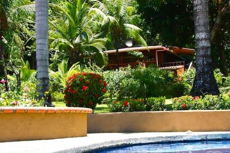 Montezuma Tree House - Montezuma - House