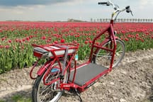 A - Must Do - joyful experience is the electric WALKING BIKE (photo)  for hire at 1,4km from the cottage. RENTAL BIKES or E-bikes are also available in IJmuiden. In April - May you can admire the beautiful flowering bulb-fields in our neighbourhood