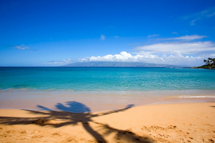 Awesome Beach - Elegant Villa -Tropical Oasis