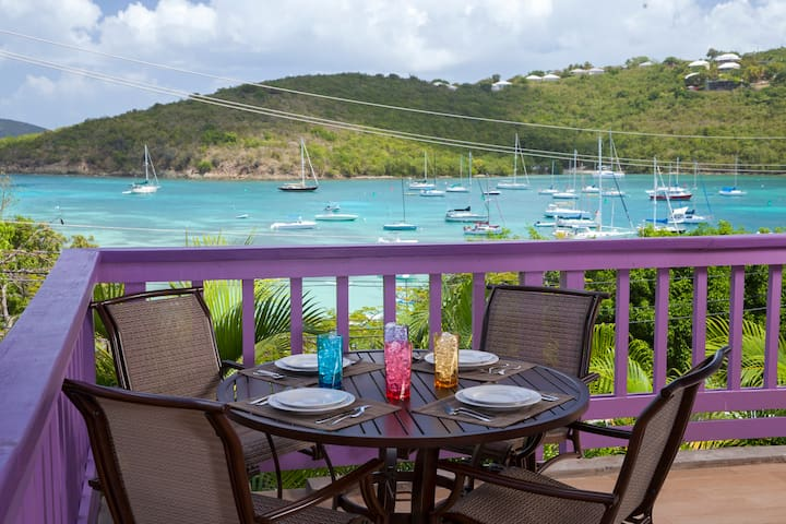 Newly Remodeled w/Magnificent View - Cruz Bay - Apartment