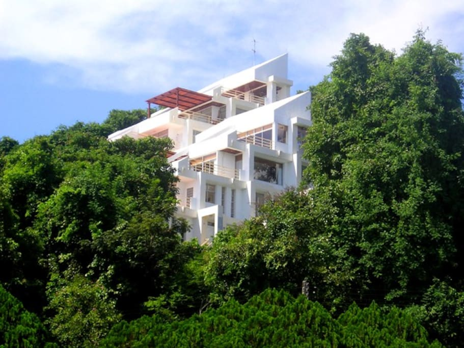 Kaps Mountain Condos are in the jungle and just a 'stones throw' from the beach