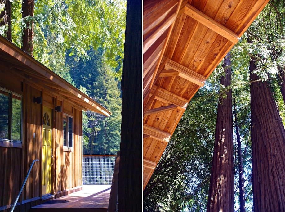 With trees all around , it feels like you get to stay in a tree house.