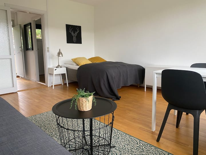 H7,one room apartment 10 km to downtown cph