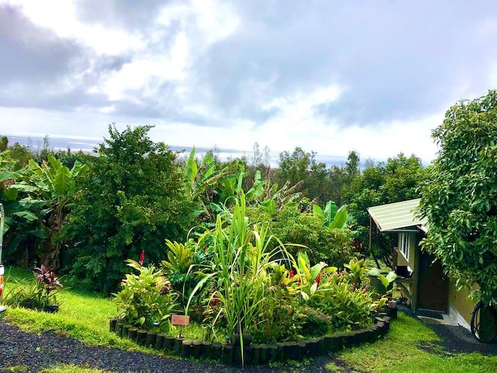 Private Apartment near Pahoa Hawaii