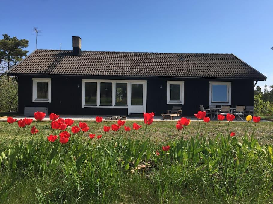 Husets baksida