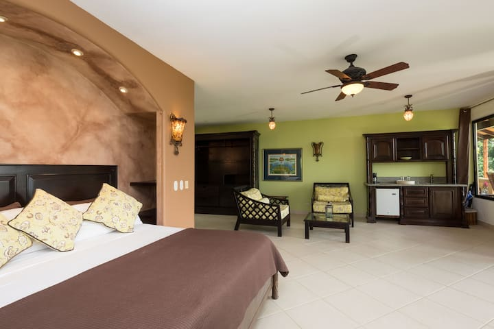 Suite #3 with King bed and outdoor shower and mini bar.  Ocean Views