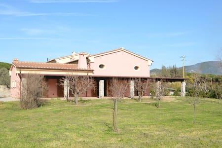 Villa Vecchio Frantoio - Marina