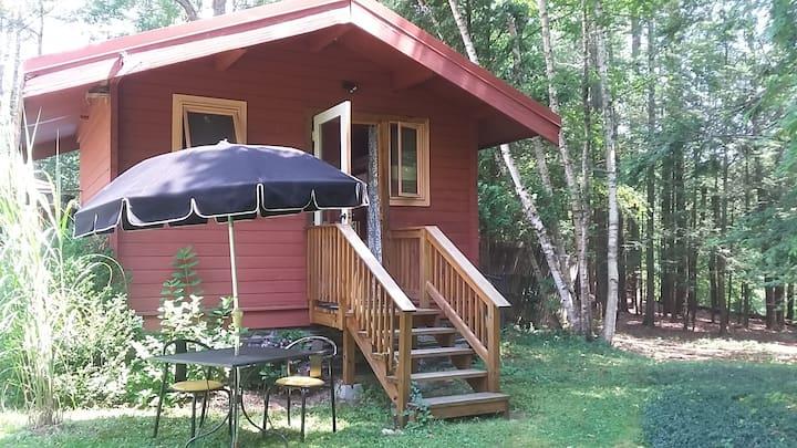 Cozy Cabin on the Sawkill Creek