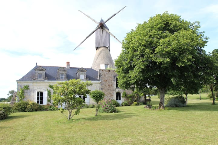 Moulin à vent (Wind mill) - Saint-Rémy-la-Varenne - House