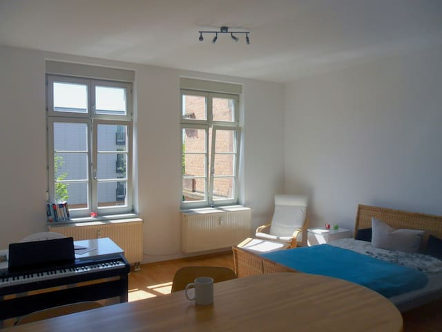 Modern Apartment in old building - Offenburg - Apartment