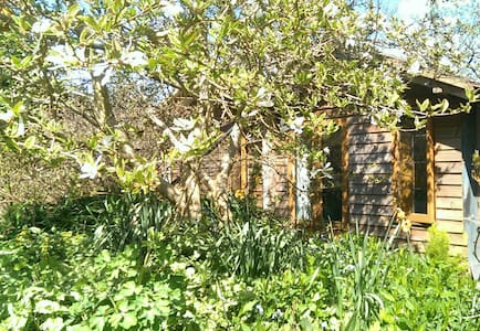 Beautiful Blossom Bothy  - Oakhanger