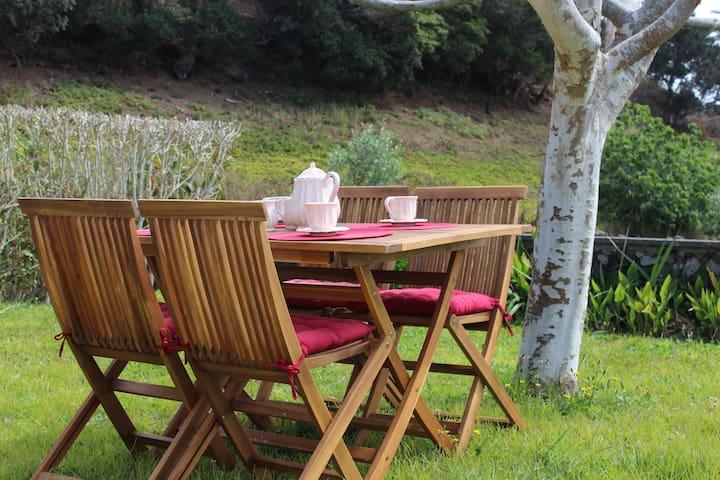 Casa Rústica com Jardim - Agua De Pau - Talo