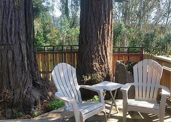 3 Trees Hollow - Charming Redwood cottage for two - Arcata - Μπανγκαλόου