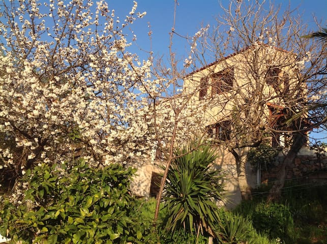 Villa entre mer et montagne - Ambiegna Corse - Villa