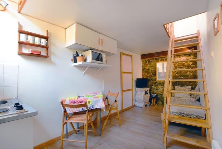 Duplex Guillotière Saxe