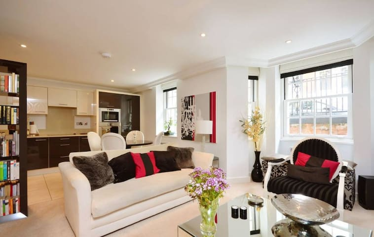 Stylish 2-Bedrooms Apartment in Central London - London - Apartment