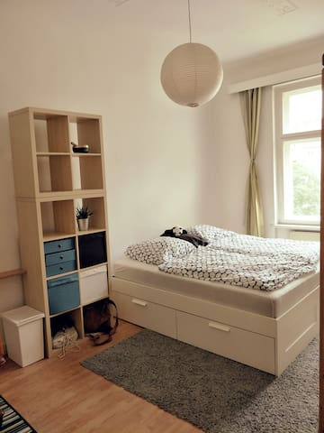 Zimmer in bester Lage zwischen Mauerpark und Mitte