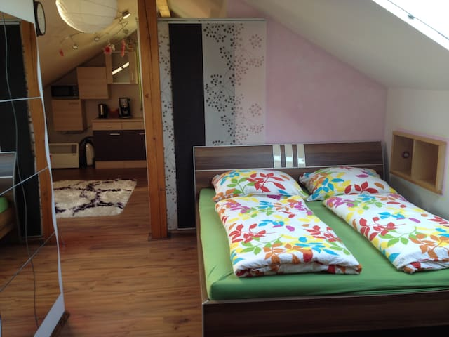 Cozy room in Eugendorf - Eugendorf - บ้าน