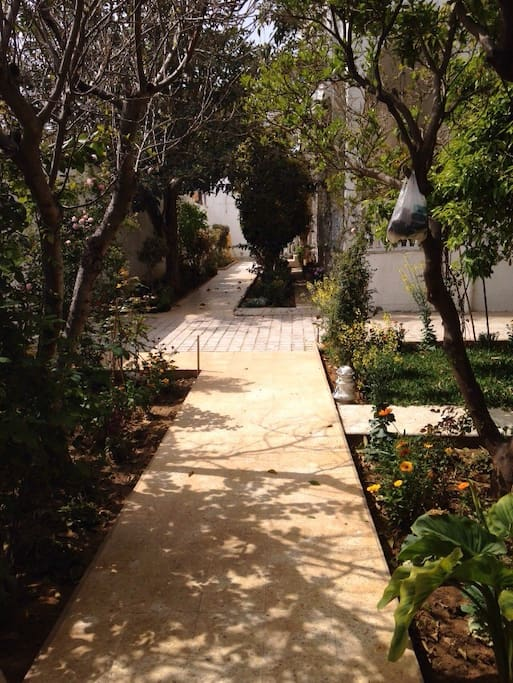 Beautiful large garden. Guests can enjoy their breakfast in an outdoor seating area in the garden