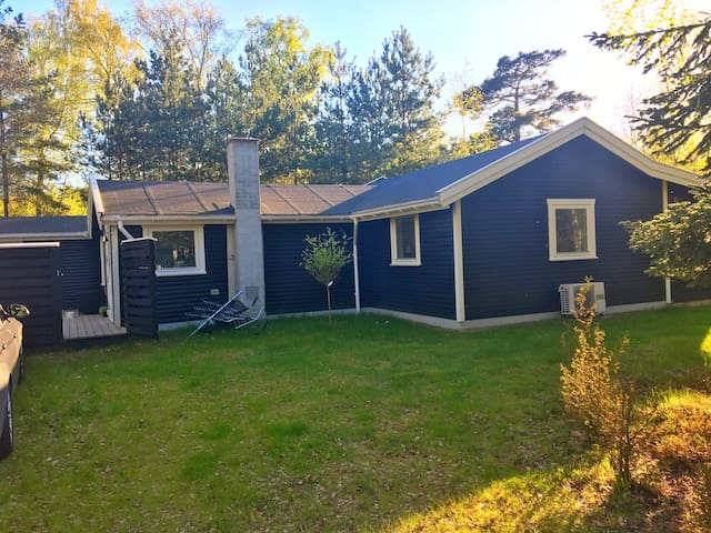 Fantastic retreat near beach & forest in Rørvig