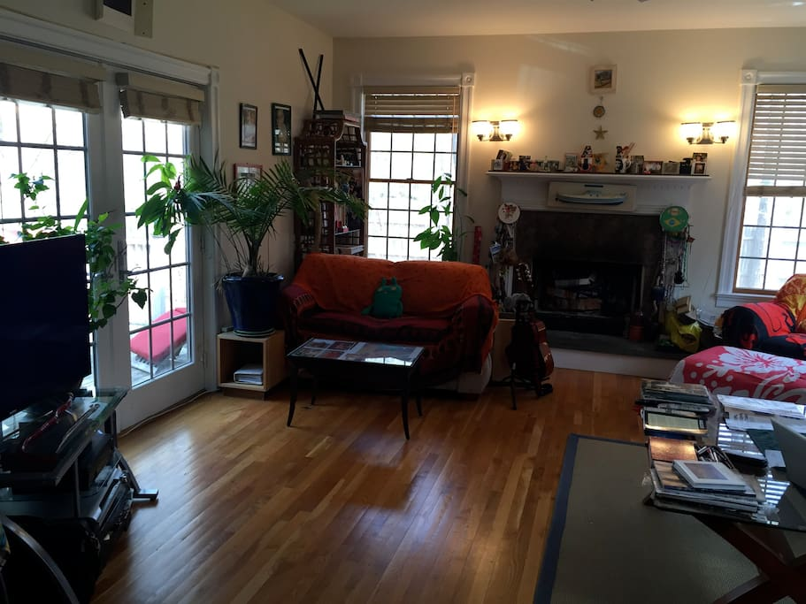 living room TV room
