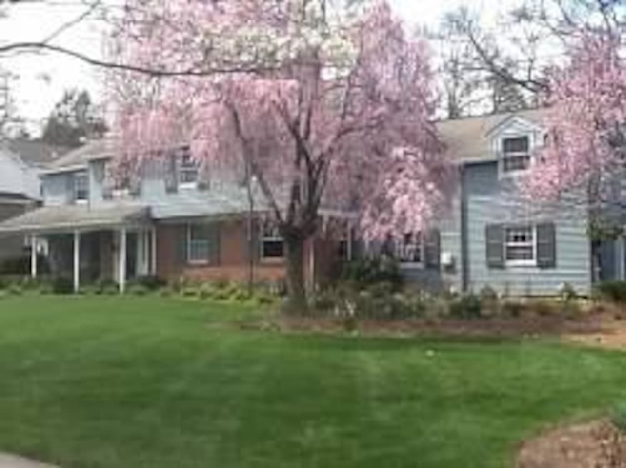 Spacious home on a very quiet street with lovely gardens