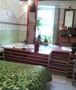 Magnifique appartement type 4 - Royat