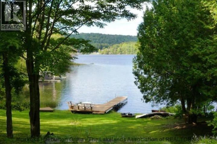 Lakefront 4 seasons cottage - Haliburton