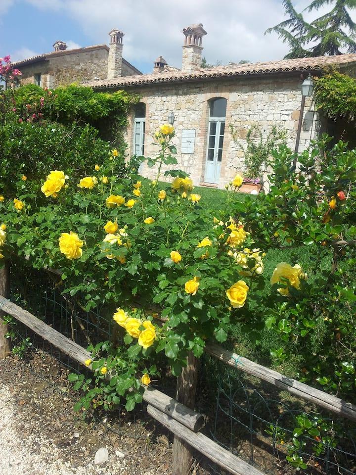 Beautiful villa in Todi