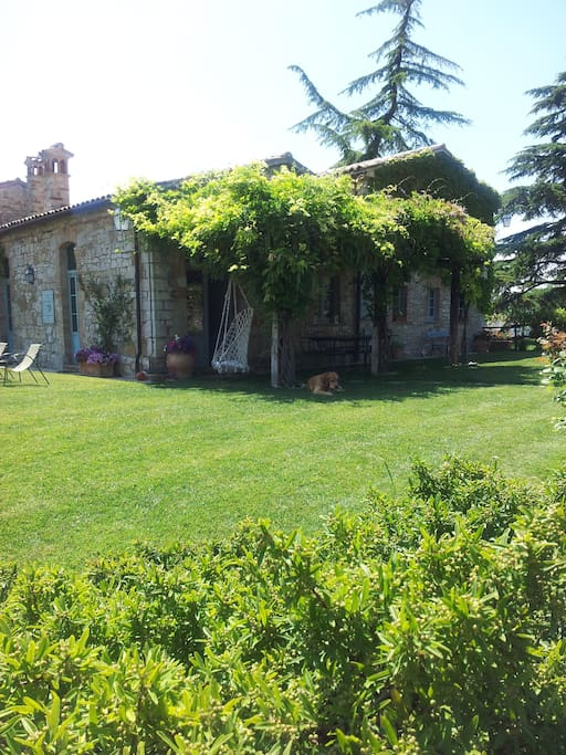 peacefull, green and silent environement, thogh within a borgo