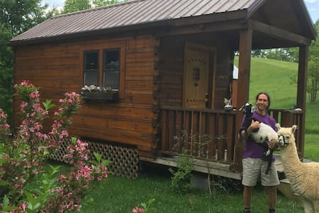 Log Cabin Tiny House!