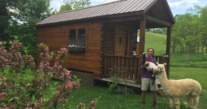 Log Cabin Tiny House!