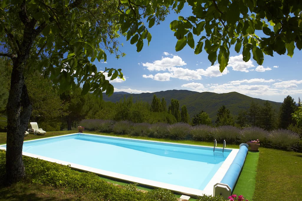 12m x 6m swimming pool with natural shade and magnificent views