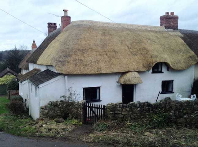 Thatched cottage in Dorset hamlet.