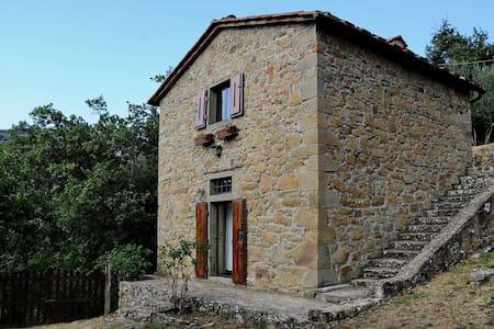 #SLOW TUSCANY TOURISM - Castelfranco di sopra - Casa
