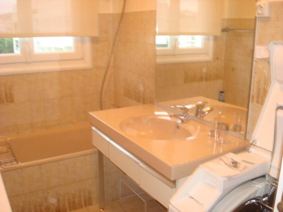 Salle de bain, baignoire, vue sur montagne