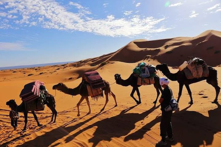 enjoy around desert merzouga - errachidia - Bed & Breakfast