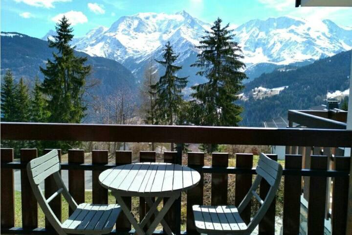 Magnifique appartement vue sur le Mont-Blanc