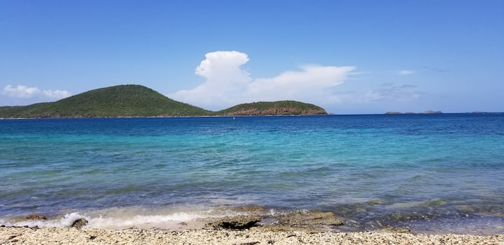 Free Trip to Culebra or Rain Forest