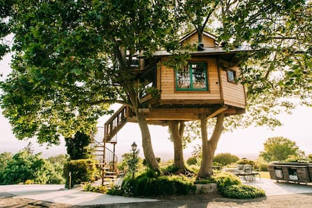 Treehouse , San Jose