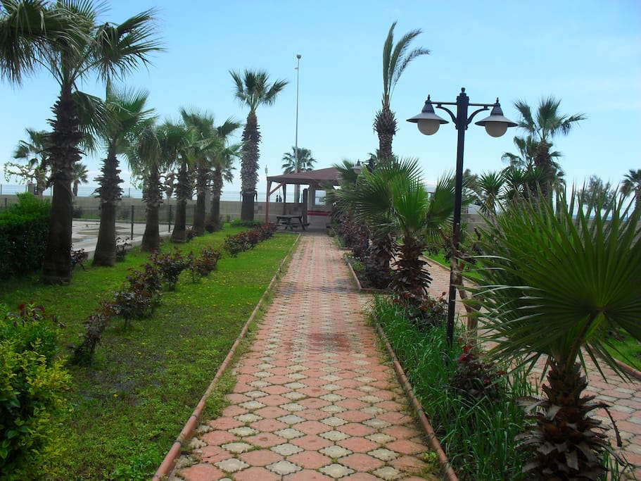 There is a wonderfull garden opposite the sea near the shooping mall and central of the city.