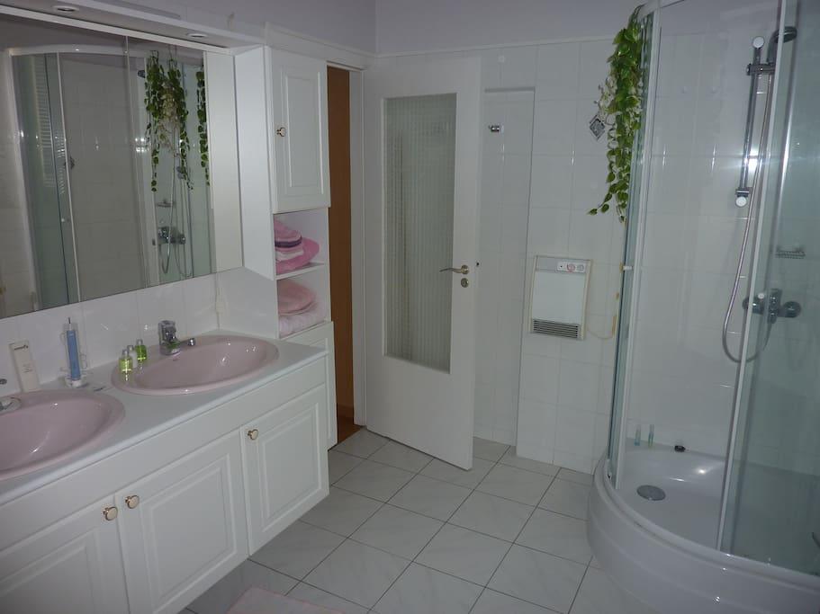 La salle de bain avec une douche