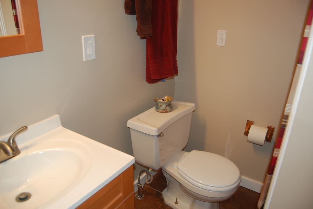 Compact bathroom with sink, toilet and shower