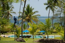 Tropical garden overlooking the indian ocean. Viewed from the house