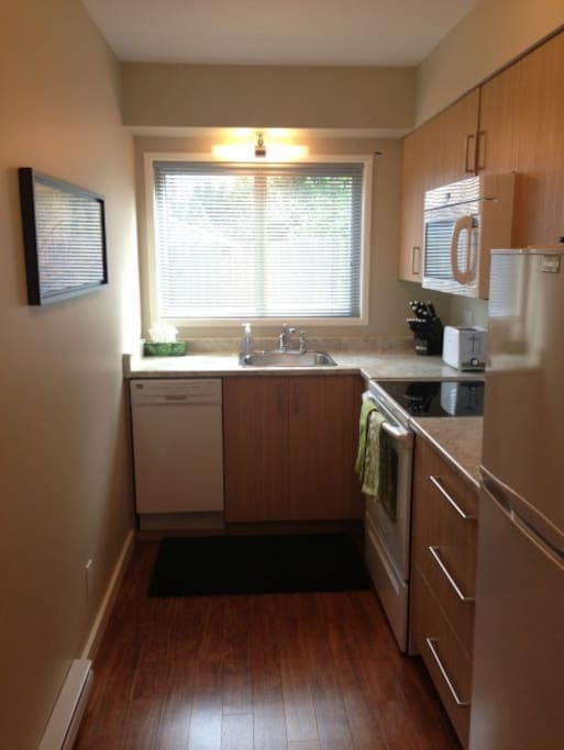 Compact well equipped kitchen with 4 appliances