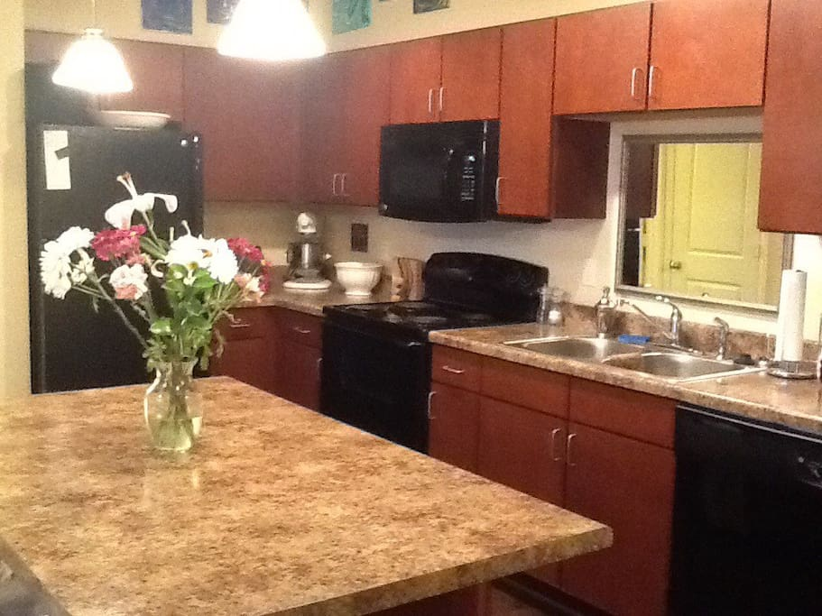 Luxurious One Bedroom Apartment Apartments For Rent In Omaha Nebraska United States